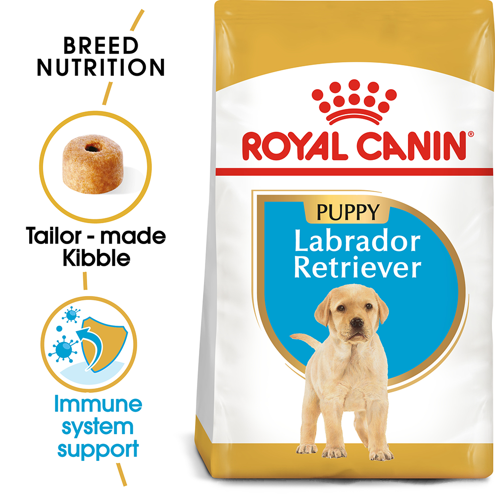 royal canin dog food labrador junior puppy 12 kg ebay. Black Bedroom Furniture Sets. Home Design Ideas