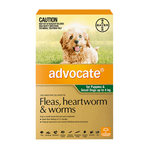 Advocate Advocate Dog Small Green