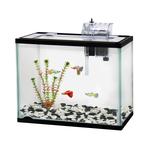 Classica Classica Aquarium Starter Kit