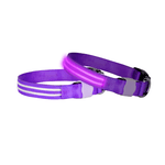 Doglite Doglite Double Trouble Led Collars Purple Haze