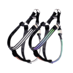 Doglite Doglite Double Trouble Led Harness Northern Lite