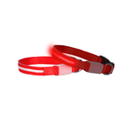 Doglite Doglite Mini Dog Led Collars Red Nite