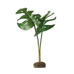Exo Terra Exo Terra Decorative Plant Phylo Leaves