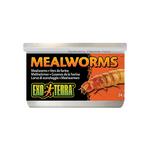 Exo Terra Exo Terra Mealworms 34g