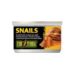 Exo Terra Exo Terra Snails Unshelled 48g