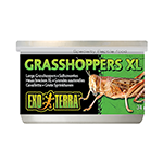 Exo Terra Exo Terra Wild Grasshoppers each
