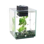 Fluval Fluval Chi Aquarium
