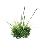 Fluval Fluval Chi Boxwood And Tall Grass Ornament