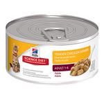 Hills Science Diet Hills Feline Adult Tender Chicken Dinner Cans 24 x 156g