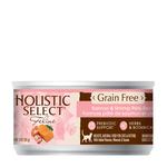 Holistic Select Holistic Cat Grain Free Salmon Shrimp 24 x 156g