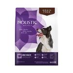 Holistic Select Holistic Select Dry Dog Food Turkey And Lentils 10.88kg