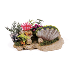 Kazoo Kazoo Clam With Coral Plants And Air