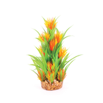 Kazoo Kazoo Combination Plant Thin Leaf With Orange Flower
