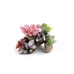 Kazoo Kazoo Coral With Rock And Plants