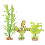 Kazoo Kazoo Silk Plant Multipack Two