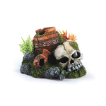 Kazoo Kazoo Skull With Plants And Air