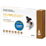 Revolution Revolution Dog Brown