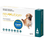 Revolution Revolution Dog Green