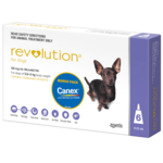 Revolution Revolution Dog Purple