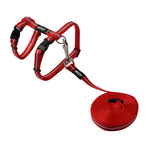 Rogz Rogz Alleycat Harness Lead Red