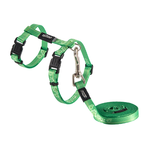 Rogz Rogz Kiddycat Harness Lead Lime Paws