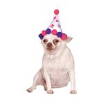 Rubies Deerfield Rubies Deerfield Dog Birthday Hat Girl