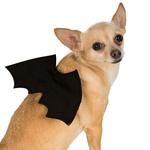 Rubies Deerfield Rubies Deerfield Dog Costume Bat Wings