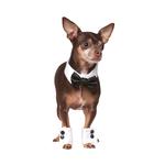 Rubies Deerfield Rubies Deerfield Dog Costume Tuxedo Set