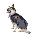 Rubies Deerfield Rubies Deerfield Dog Costume Witch
