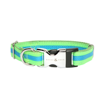 Rufus and Coco Rufus And Coco Dog Collar Bronte Brights Green And Blue