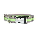 Rufus and Coco Rufus And Coco Dog Collar Bronte Brights Silver And Green