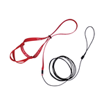The Aviator The Aviator Harness And Leash Red