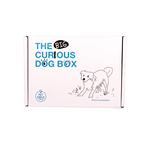 The Curious Box The Curious Big Dog Box