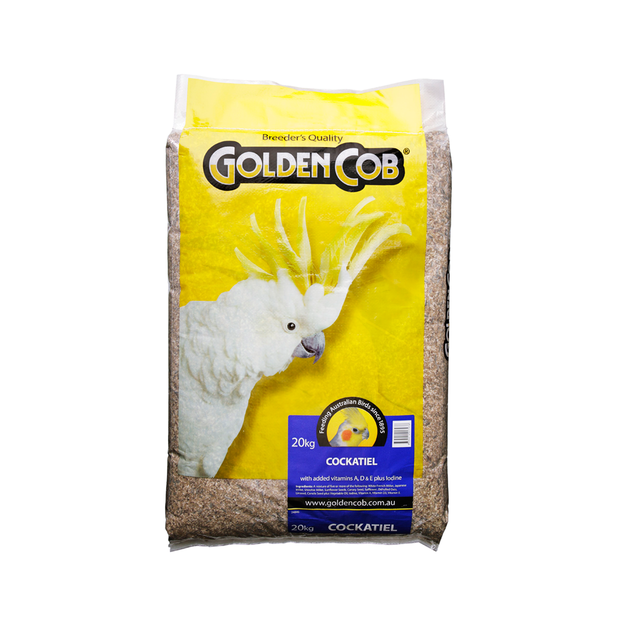 golden-cob-cockatiel-mix primary