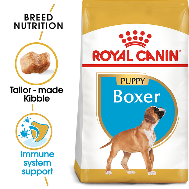 royal canin boxer junior boxer puppy pet circle. Black Bedroom Furniture Sets. Home Design Ideas