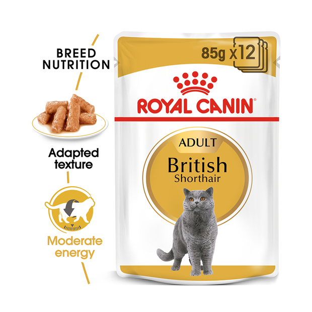 royal canin feline british shorthair gravy pet circle. Black Bedroom Furniture Sets. Home Design Ideas