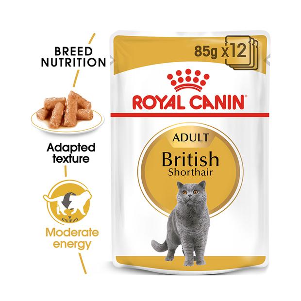 royal canin feline british shorthair gravy pet circle. Black Bedroom Furniture Sets. Home Design Ideas