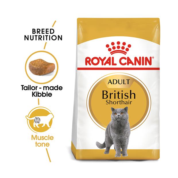 royal canin feline british shorthair pet circle. Black Bedroom Furniture Sets. Home Design Ideas