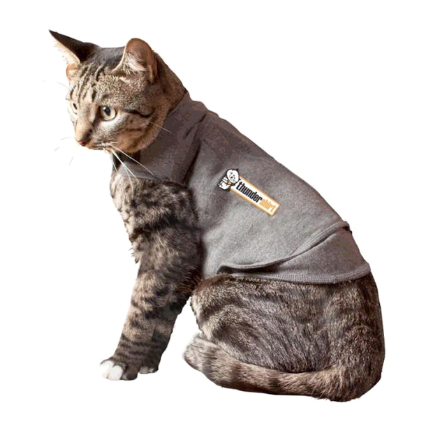 thundershirt-for-cats primary