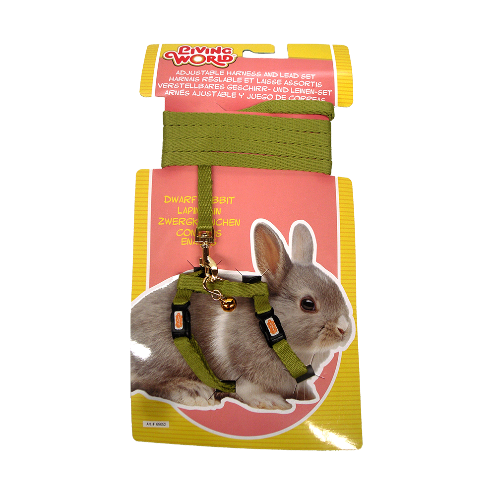 Dwarf Rabbit Harness And Lead Circuit Wiring Diagram Hub Living World Set Green Pet Circle Baby Rabbits Breeds