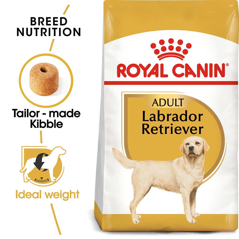 royal canin dog food labrador 3kg ebay. Black Bedroom Furniture Sets. Home Design Ideas