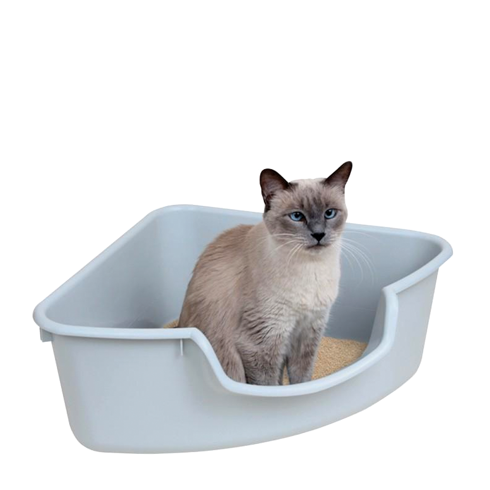 Smart Cat Litter Box Reviews
