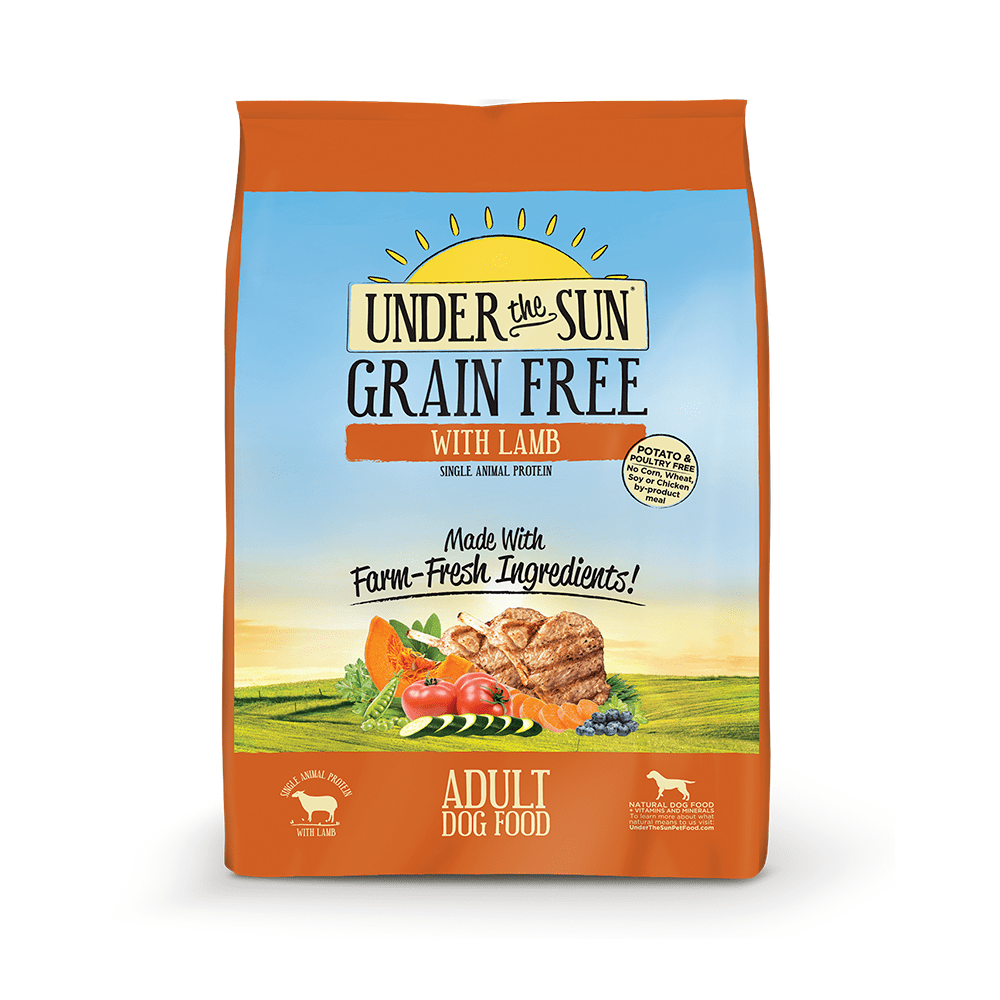High Protein Grain Free Dry Cat Food