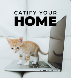 Catify your Home