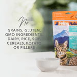 feline-natural-beef-and-hoki-freeze-dried-cat-food