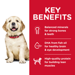 hills-science-diet-puppy-large-breed-dry-dog-food