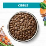 ivory-coat-grain-free-dry-cat-food-adult-ocean-fish-and-salmon