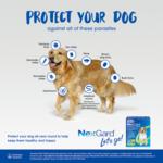 nexgard-spectra-large-dog