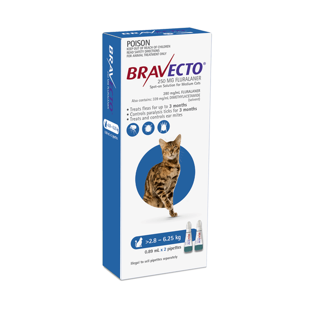 bravecto-spot-on-for-cats-blue