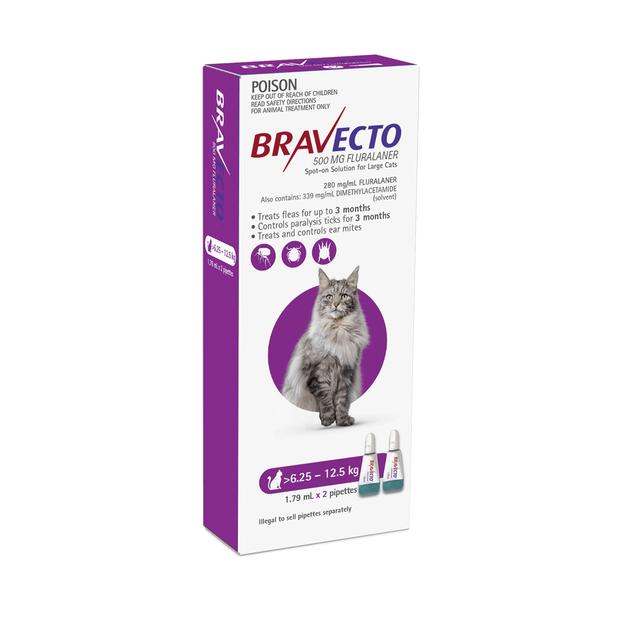 bravecto-spot-on-for-cats-purple